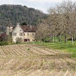 210319-Randonnée autour de Marqueyssac (Dordogne)96