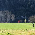 210320-(73) Cingle de Témolat (Dordogne)