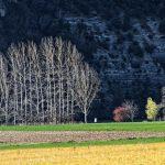 210320-(81) Cingle de Témolat (Dordogne)