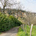 210326-(10) La Roque vu de St Julien (Dordogne)