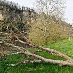 210326-(11) La Roque vu de St Julien (Dordogne)