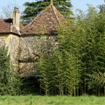 210329-(73) Cingle de Trémolat (Dordogne)