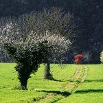 210329-(74) Cingle de Trémolat (Dordogne)