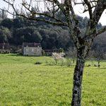 210331-(115) Randonnée Boucle de Montfort (Dordogne)