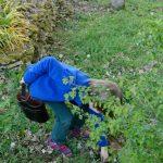 210404-(79) Roman trouve du chocolat (Dordogne)