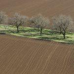 210511-(184) Balade autour de Beynac (Périgord noir)