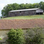 210523-(190) de Castelnaud à Veyrines de Domme (Périgord noir)