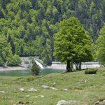 210529-(152) Lac de Bious-Artigues et Pic du midi d Ossau (Pyrénées atlantiques)