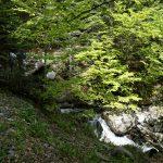 210529-(186) Lac de Bious-Artigues et Pic du midi d Ossau (Pyrénées atlantiques)