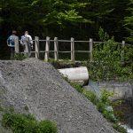 210529-(215) Lac de Bious-Artigues et Pic du midi d Ossau (Pyrénées atlantiques)