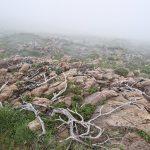 210530-(236) Col Aubisque - Randonnée boucle crêtes d Andreyt (Pyrénées atlantiques)