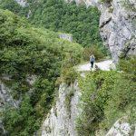 210601-(34) Chemin de la mâture (Pyrénées Atlantiques)