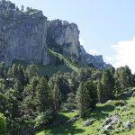 210602-(170) Bious Artigues - Vallée Sud (Pyrénées Atlantiques)