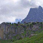 210602-(220) Bious Artigues - Vallée Sud (Pyrénées Atlantiques)