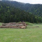 210606-(20) Randonnée Plo del Naou - Col d'Aspin (Hautes Pyrénées)