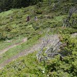 210606-(46) Randonnée Plo del Naou - Col d'Aspin (Hautes Pyrénées)