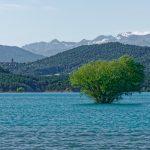 210607-(166) Lac Mediano (Aragon - Sobrarbe)