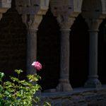 210610-(223) Roda de Isabena (Aragon - Ribagorza)